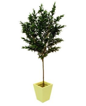 Olivenbaum mit Oliven 250cm, Kunstpflanze