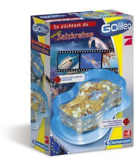Clementoni Galileo Original Salzkrebse